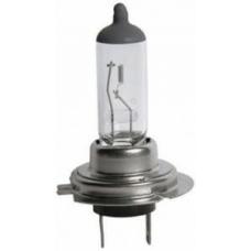 Лампа Н7 ЧЕРНАЯ для автомобильных фар 24V 70W PX26d  MB Actros, MAN F2000. Scania 4-ser, DAF